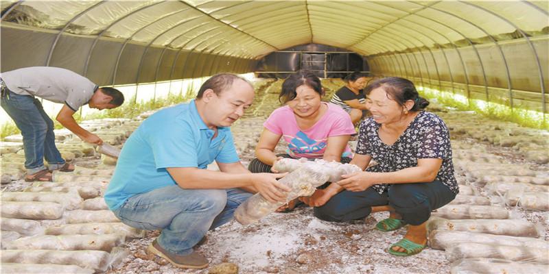 湖南省农科院科技扶贫助力农民增产增收