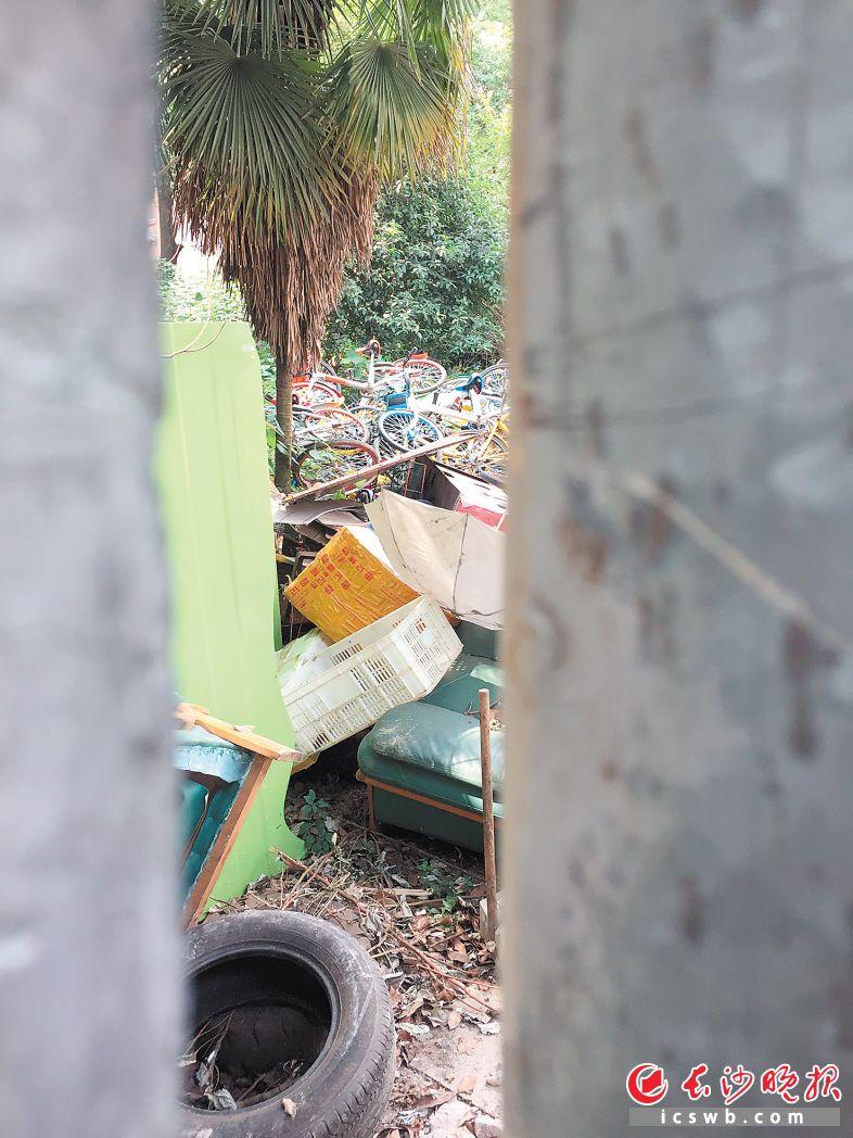 透过铁门的缝隙,可以看到各类共享单车与废品堆放在一起。 长沙晚报记者 朱炎皇 摄
