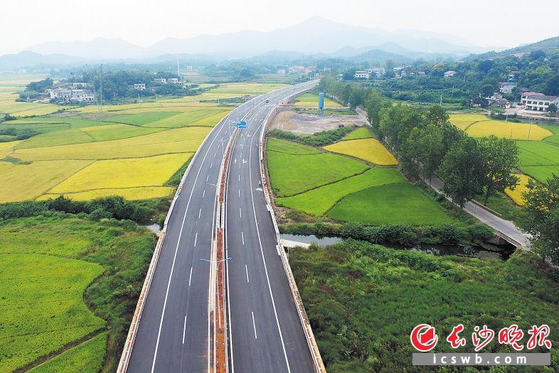 昨日,岳宁大道岳麓区段实现主体完工,岳宁大道预计9月25日全线放开交通。长沙晚报记者 王志伟 摄
