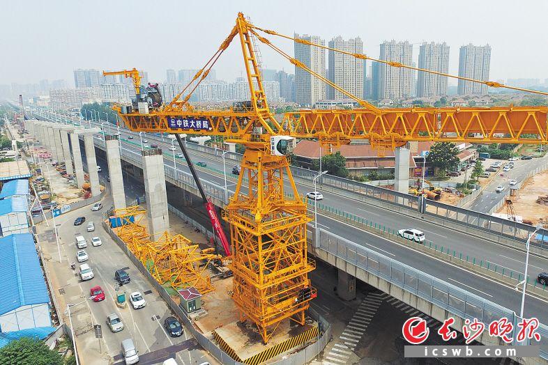 在万家丽路立交钢箱梁吊装过程中,将采用亚洲最大塔吊进行施工,目前该塔吊已基本安装到位。长沙晚报记者 王志伟 摄