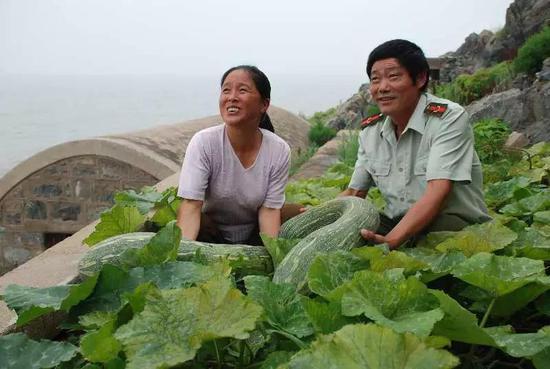 王继才和王仕花亲手栽种的蔬菜丰收了。资料图片(二)