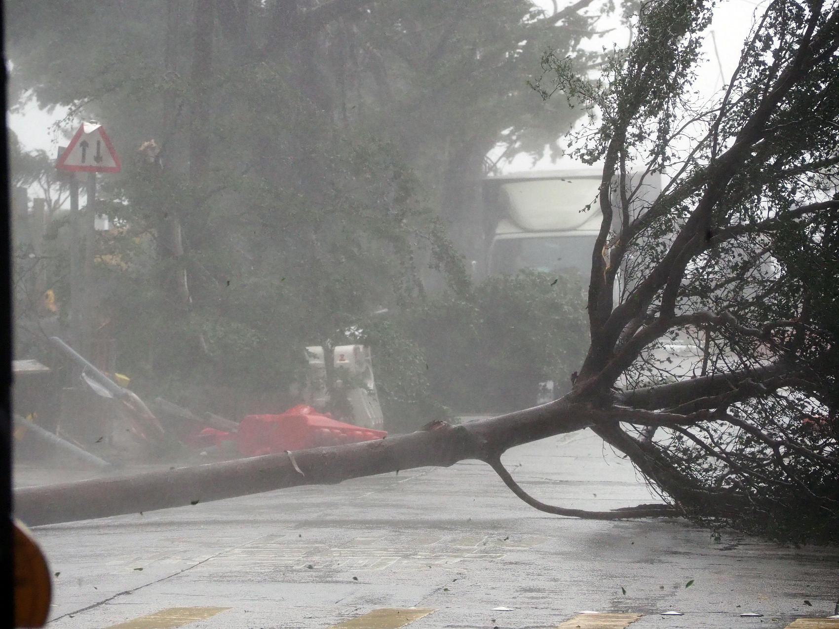 """超强台风""""山竹""""来了!"""
