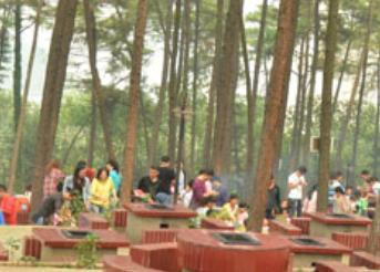 长沙植物园烧烤乐园