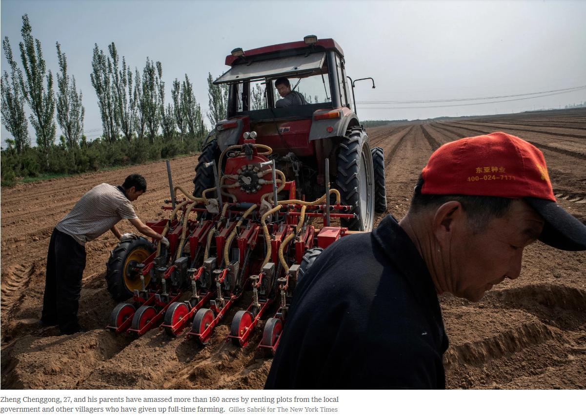 """【中国那些事儿】外媒关注中国农村之变:致富路上守住""""乡愁"""""""