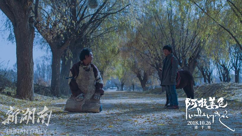《阿拉姜色》心机松太加:为拍戏跪烂三条视频导演婊牛仔图片