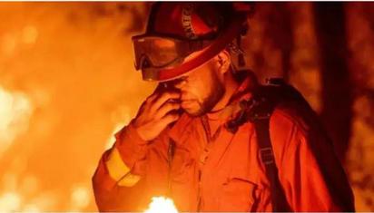为什么一场山火难倒了整个美国