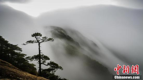 """黄山雨后""""瀑布流云""""气势磅礴 新湖南www.hunanabc.com"""