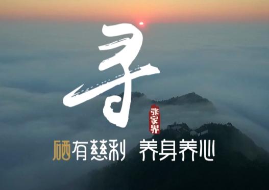 """""""硒有慈利""""品牌宣传片"""