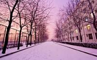 当大学邂逅初雪,哪一所高校让你心驰神往?