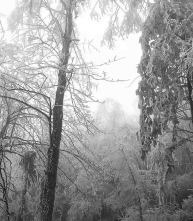 双峰九峰山、紫云峰等地现雾凇景观