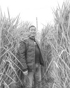 两米高巨型稻坐专车北京展览 飞机高铁全都坐不了