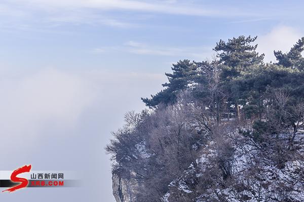 王莽岭风光 (2)