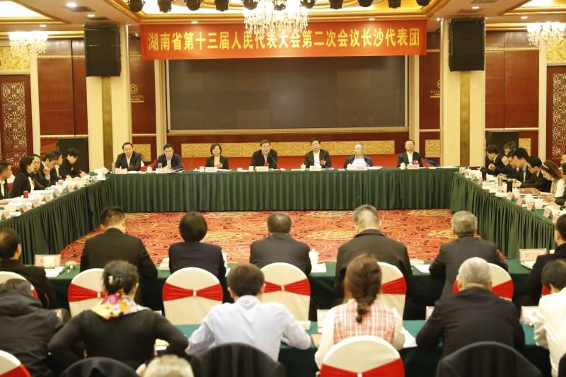 杜家毫参加长沙代表团审查:担当全省高质量发展的领头羊排头兵