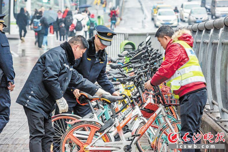 昨日,五一大道,城管队员将人行道边的共享单车摆放整齐,保持市容整洁。 长沙晚报全媒体记者 陈飞 摄