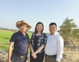 海南制种的湖南人:春节是一种思念