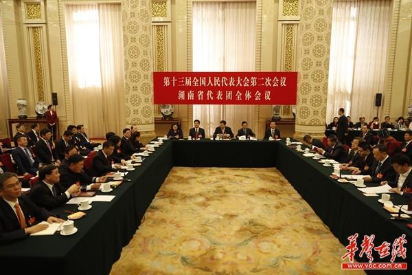 滚动|湖南代表团举行第四次全体会议 郑建新等8位代表发言
