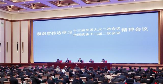 湖南召开会议传达学习全国两会精神 杜家毫许达哲等出席