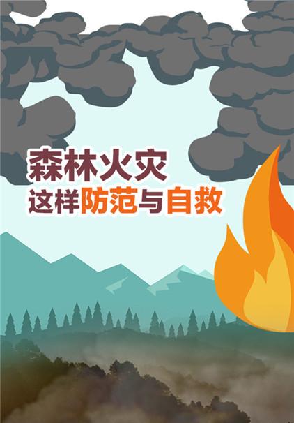 一图读懂丨森林火灾,这样防范与自救