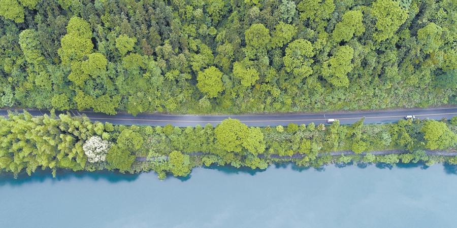 生态美 交通畅