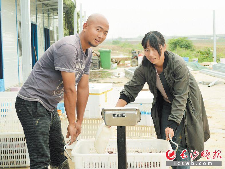 贺慧(右)、黄智(左)抬着一筐小龙虾过秤。两人研究生毕业后就扎根农村,将自己所学运用到田间地头,打造高质量农业模式。长沙晚报全媒体记者 朱华 摄