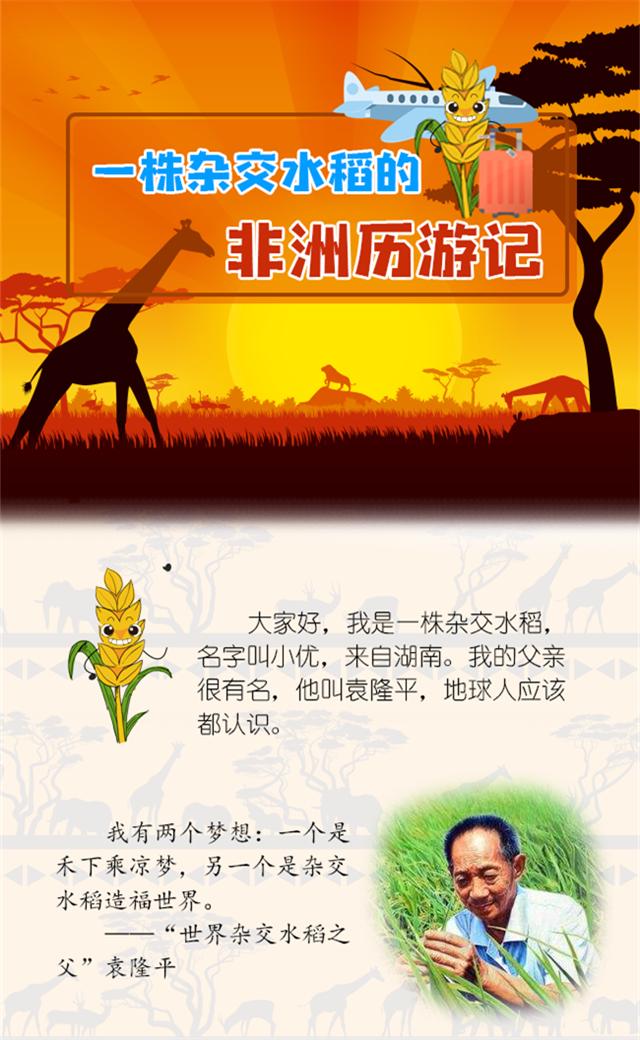 【图解】一株杂交水稻的非洲历游记