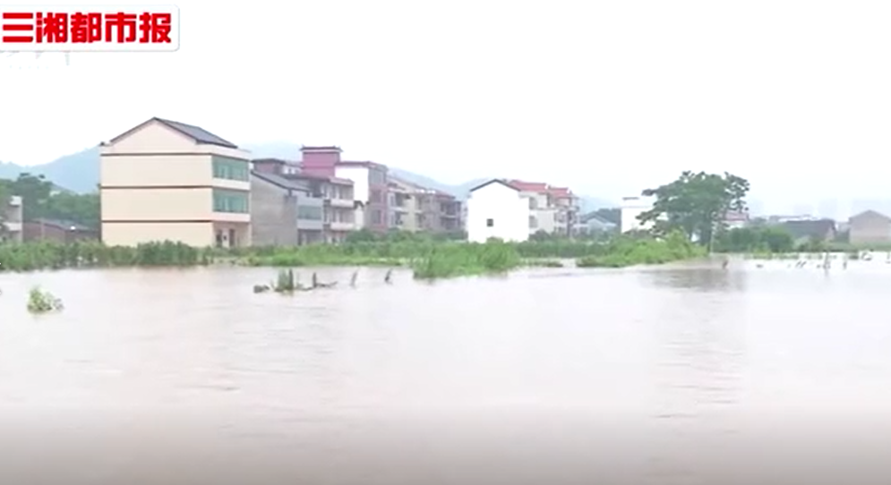 视频|暴风雨中最可爱的人——湖南迎战暴雨洪峰纪实