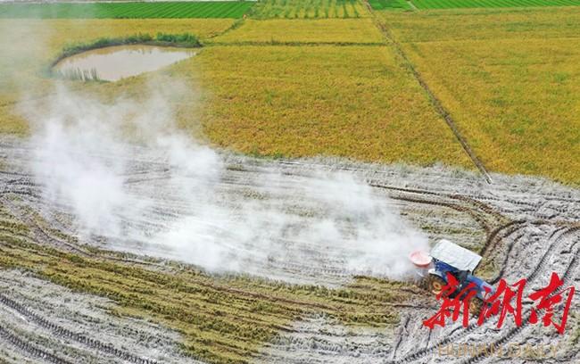 改良土壤 提升地力