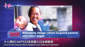 http://www.edaojz.cn/yuleshishang/181639.html