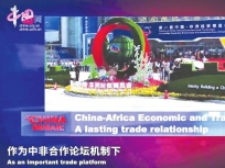 中国3分钟|永不落幕盛会见证湖南开放崛起