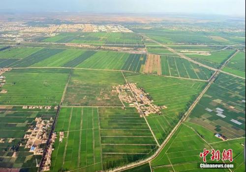 資料圖:<a target='_blank' href='http://www.chinanews.com/'>中新社</a>記者 于晶 攝