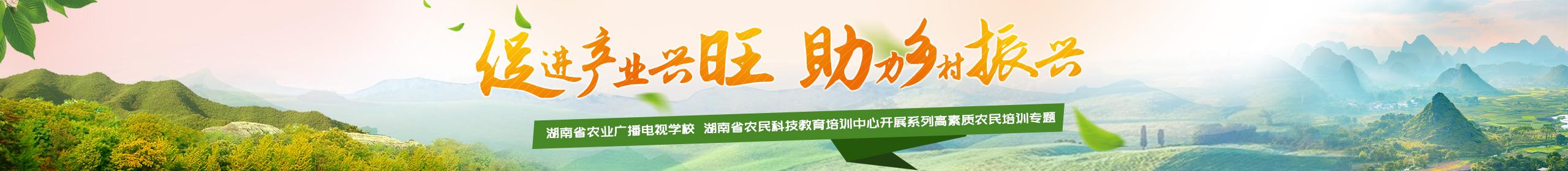 促进产业兴旺 助力乡村振兴——湖南省农业广播电视学校 湖南省农民科技教育培训中心开展系列高素质农民培训专题