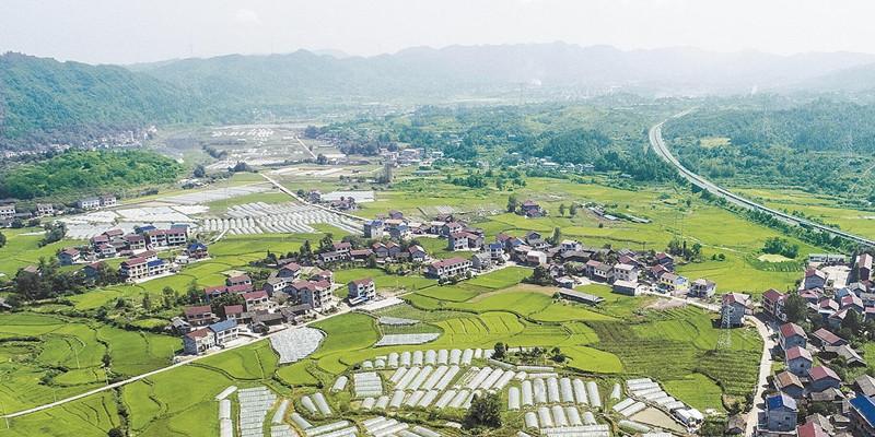 乡村美 产业旺