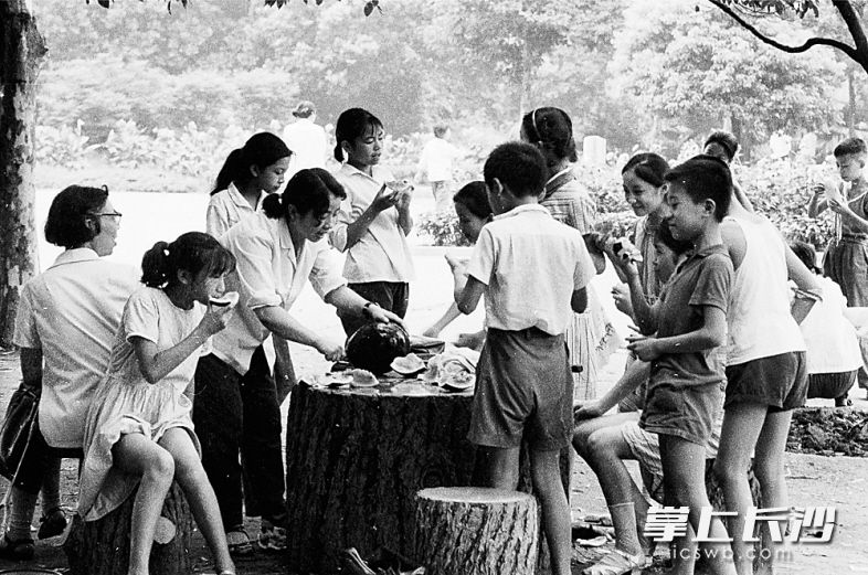 1980年8月2日,炎炎夏日里,一大家子聚在年嘉湖畔大树下的石桌旁,以西瓜解暑,很是惬意。