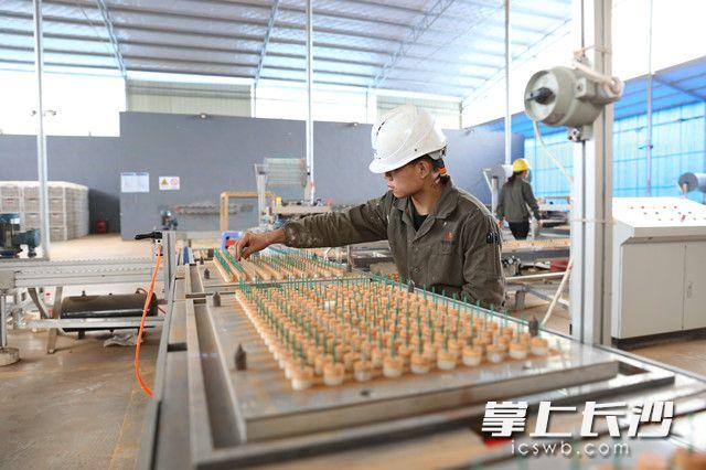 花炮厂工人在插引生产线上工作。长沙晚报全媒体记者 颜开云 摄(资料图片)