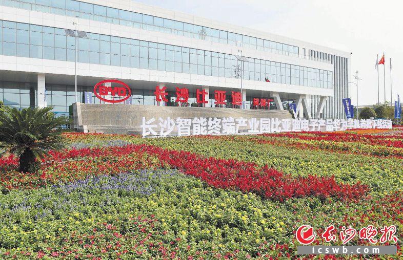 图为长沙智能终端产业园比亚迪电子工厂外景