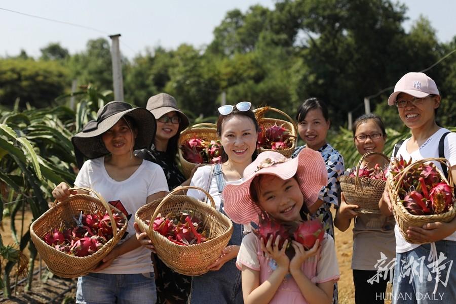 采摘休闲 乐享假期 新湖南www.hunanabc.com