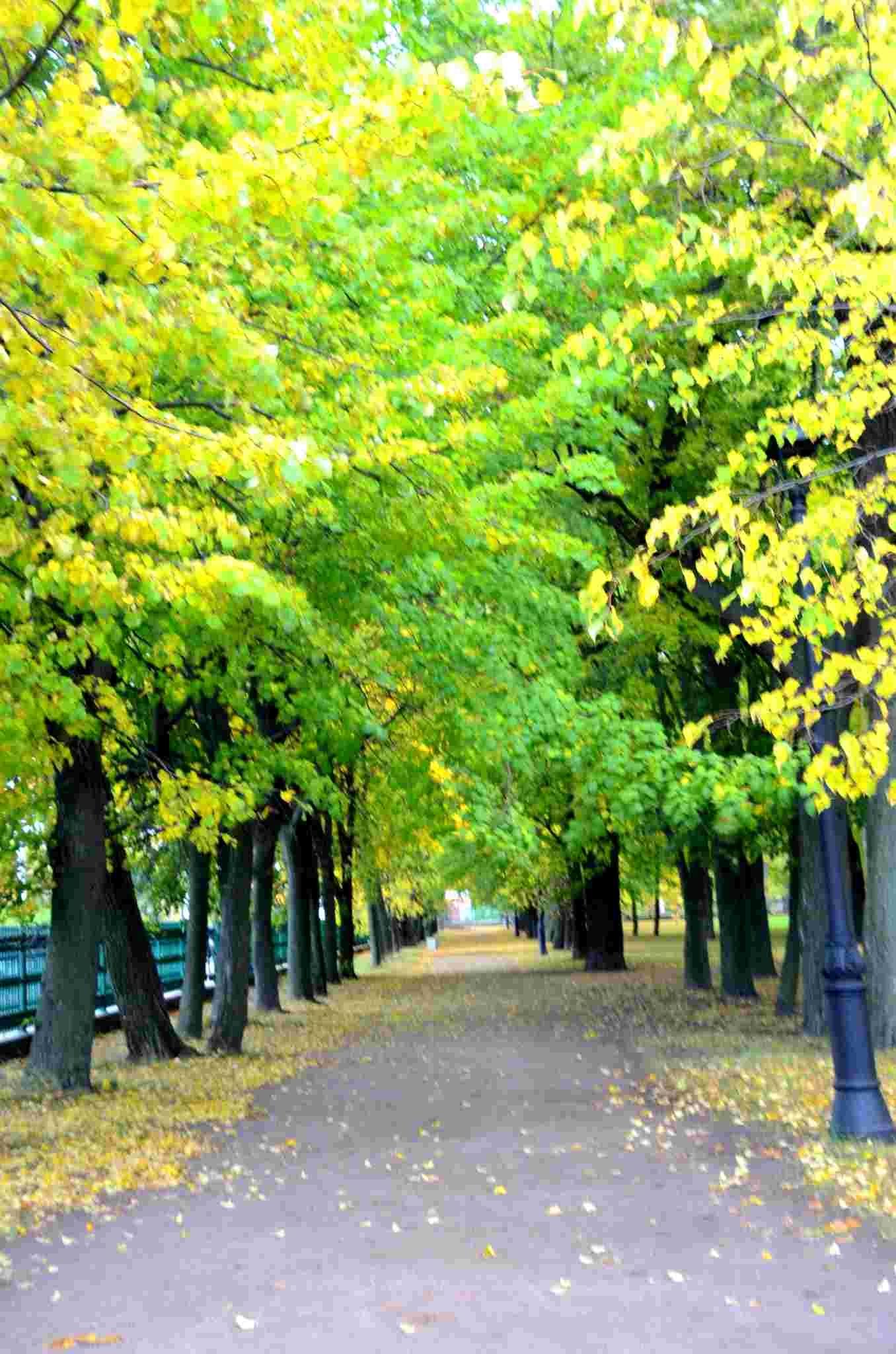 我爱这秋天的景色 新湖南www.hunanabc.com