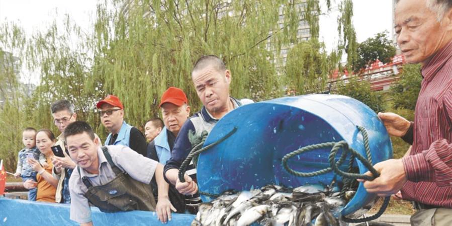 410万尾鱼苗放流浏阳河