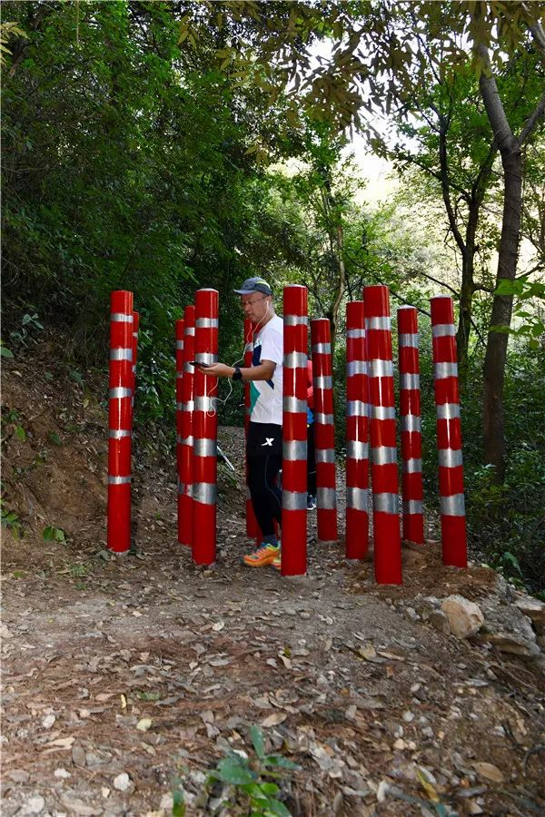 """岳麓山的小路多了道梅花桩,依然挡不住这群抬着车穿过的""""骑士"""" 新湖南www.hunanabc.com"""