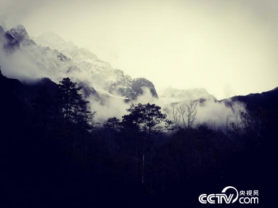 玉龙雪山核心区是长江上游最紧张的生态屏蔽。(何川/摄)