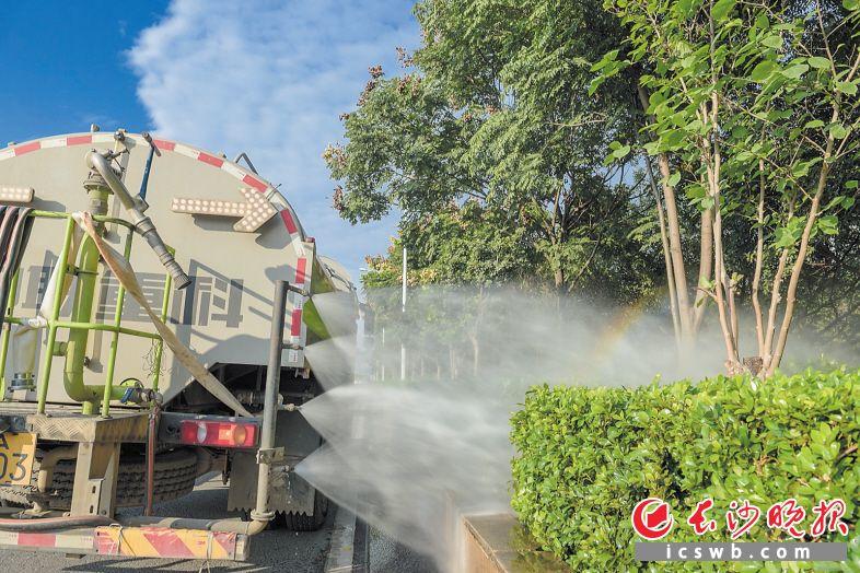 """西二环上,大型水车对沿线绿化带进行""""粗洗""""。长沙晚报全媒体记者 陈飞 摄"""