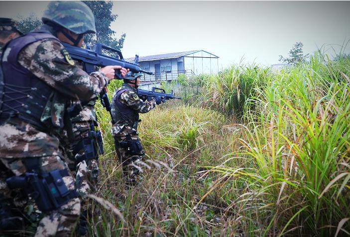 视频|砰砰……郴州一大水牛失控连伤2人,武警开枪了