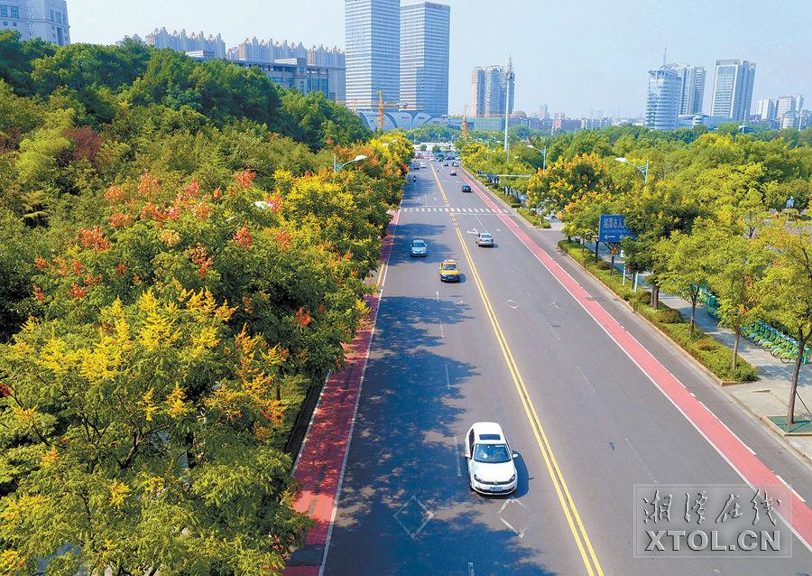 就近办理 省时便民 邵阳市区新增一处交通违法处理点