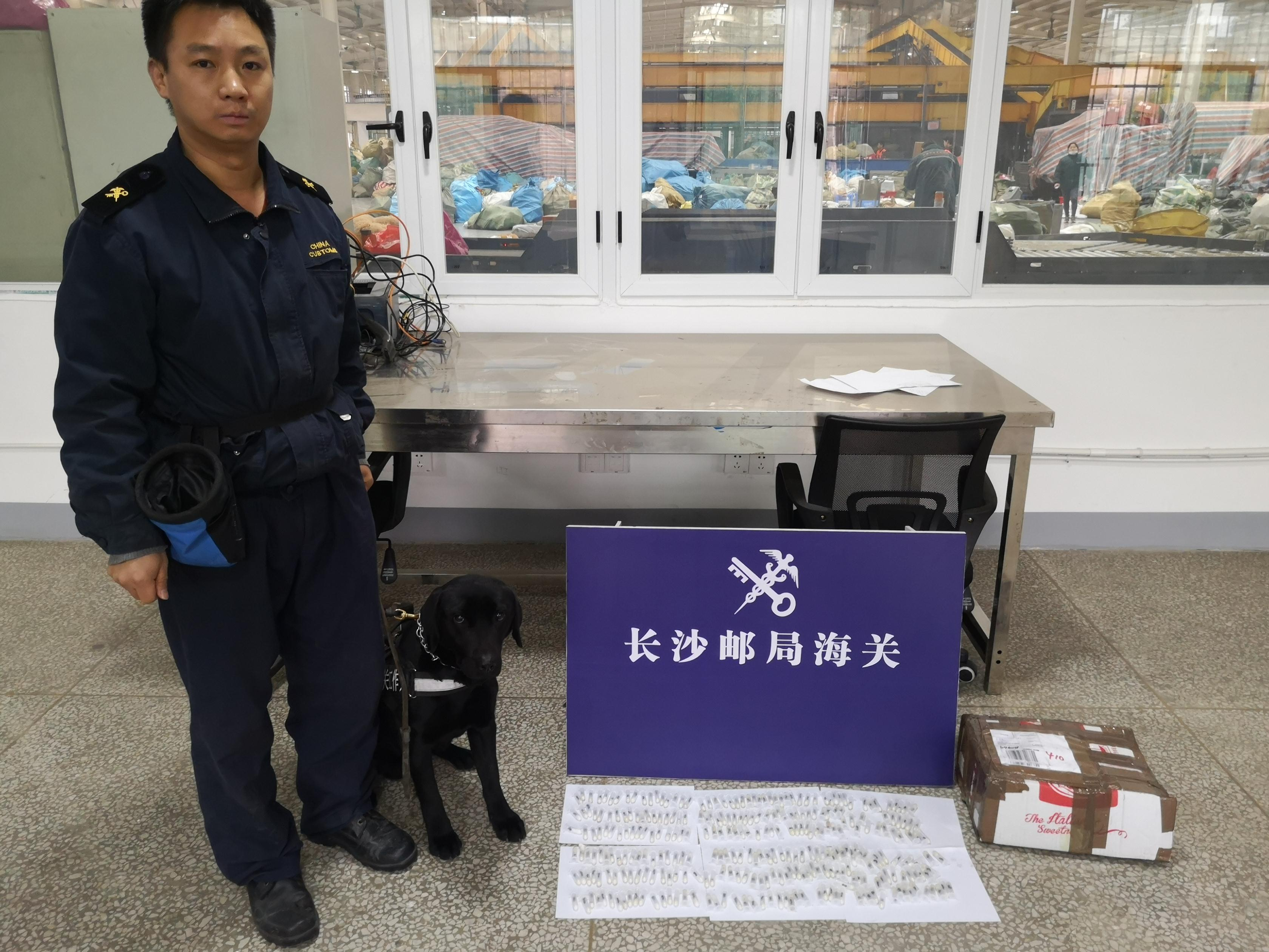 """真棒!海关工作犬""""路飞""""去年共查获禁止进境物192批"""