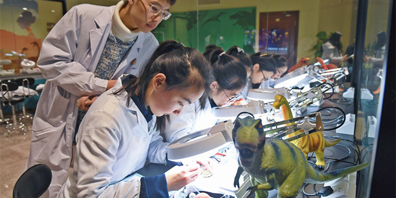 全省首个青少年化石修复实验基地开放