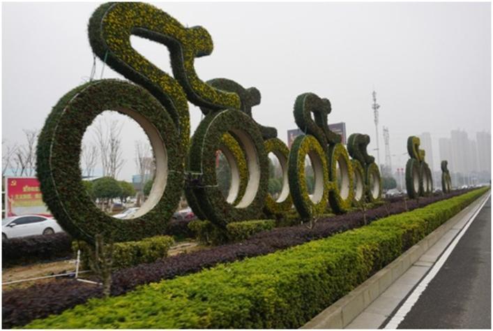 """岳阳:提升城区道路亮色""""两站四路""""花化美化"""