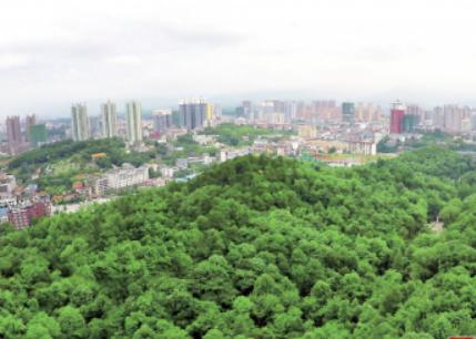 常德市森林覆盖率达到48%