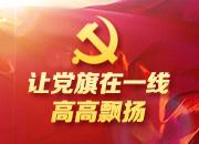 湖南:一个党员一面旗 唤起群众千百万