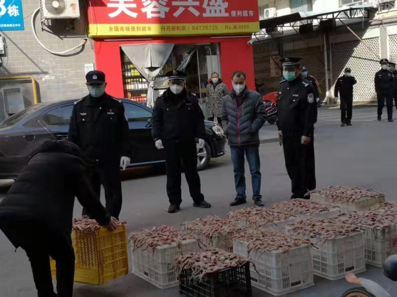 """共同战""""疫""""丨长沙森林公安收缴野生动物270余公斤"""