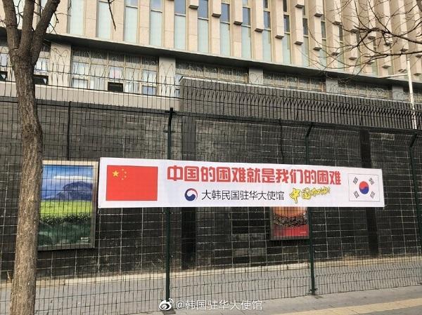 海外疫情打乱比赛日程 中国体操队将回国备战奥运